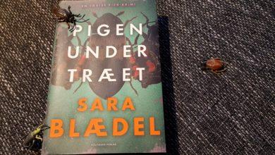 Photo of Pigen under træet af Sara Blædel